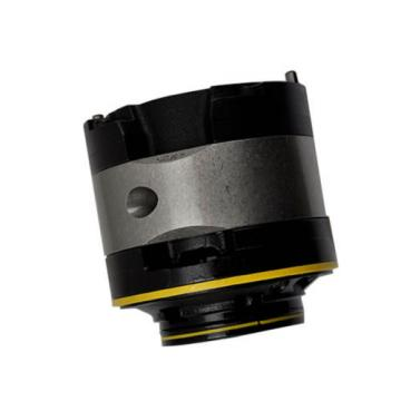 Albert PC-35V-38-R-10 Hydraulic Vane Pump Cartridge 35V-38 Vane pump parts